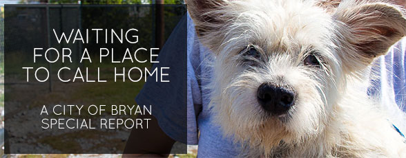 Waiting for a Place to Call Home: A City of Bryan Special Report